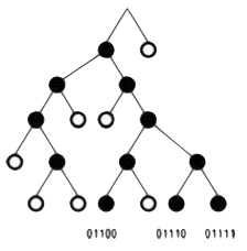 BBC Decoding Tree